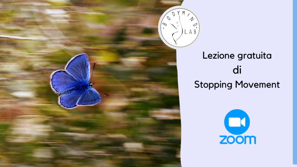Lezione gratuita di Stopping Movement su Zoom
